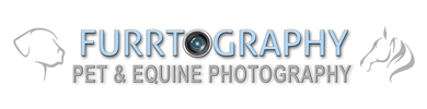 Furrtography Pet and Equine Photography Services